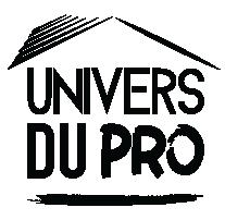 logo UDP noir.png